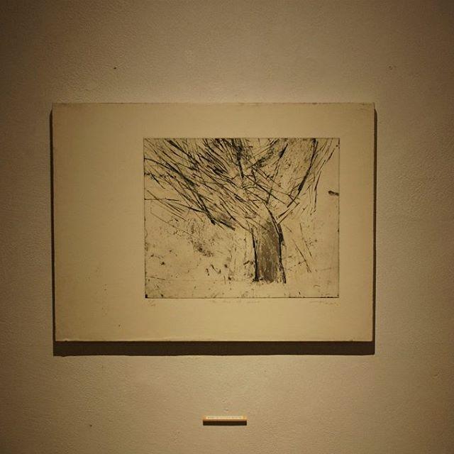 「The tree of sollow」 富田惠子展『いちばん奥の明るい場所』まで、あと6日です。 どうぞお楽しみに。