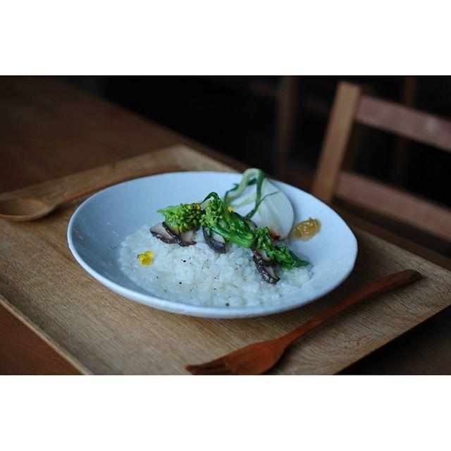 2016年3月のpatisserie MiA『NATURE LUNCH』の一品。 地元野川のお米「きぬひかり」を使用した菜花と椎茸のリゾット。 今月は「いちばん奥の明るい場所」展開催中の富田惠子さんの爽やかなイメージに合わせた内容となっています。18日・19日・24日・25日・26日に開催。ご来店お待ちしています。