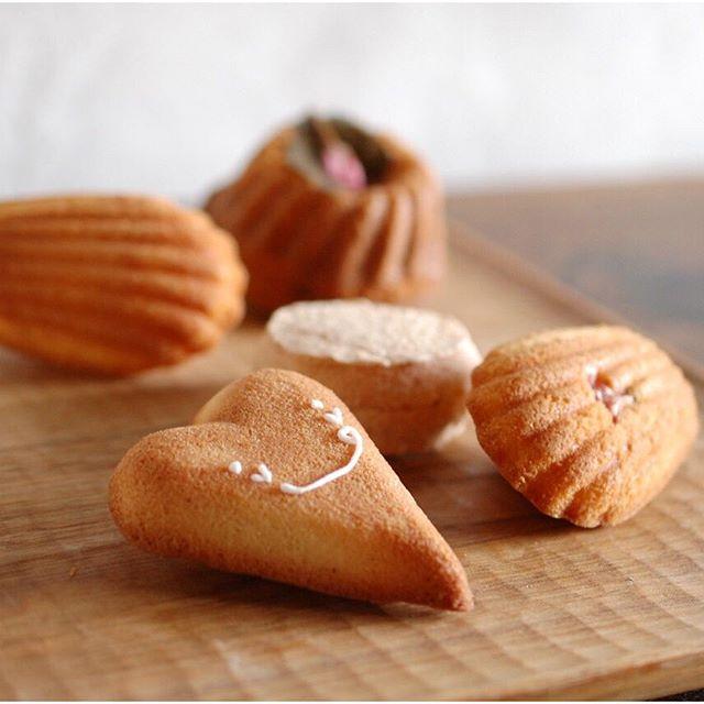 焼菓子色々。Financier,Madeleine,Dacquoise and Cherry Blossom cake. スパイラルマーケットのオンラインショップ用写真撮り。お菓子は間もなく、トースト皿やカトラリーも準備中です。