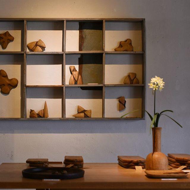 松本寛司展「コツコツコツ」 いよいよ残り1週間となりました。 本日は定休日ではありますが、ギャラリーはご覧いただけますので、お近くにお出かけの際は、ぜひ!お立ち寄りくださいませ。 今週も松本寛司さんの温かな木工作品とともに、皆さまのご来店を心よりお待ちしています。