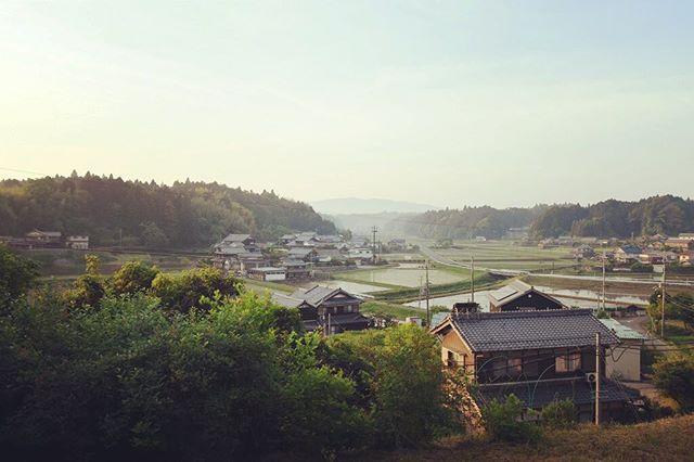 現在、木工仕事の傍ら通信制の大学(京都造形芸術大学)に在籍していて、夜中や早朝にちょこちょこレポートを書いています。最短2年で卒業できるのですが、まあ、仕事に支障が出ない程度にボチボチ楽しみながら続けていこうと思います。 以下は「住んでいる地域の自慢出来ること」というテーマで書いた小論文。里山について書きました。 「里山感覚」 丘の上にある自宅のデスクからは里山の風景が広がる。よく手入れされた田んぼと杉林。その間の緩やかな斜面には蔵を備えた日本家屋がひしめくように集落を形成している。遠くかすむ先には鈴鹿山系が臨め、ここへ越した頃に植えたウメやサツキなどの小低木と合わせた近景から遠景に至る風景は一幅の山水画のようである。大阪育ちで東京の大学に通った私がここ滋賀県甲賀の里山に住むようになって14年になるが、この眺めを見るたび嬉しく誇らしい気持ちになる。一体、この里山の心地よさとは何ゆえだろうか。  ここ数年、仕事で東京などに行くと公園やカフェにやたらと足が向く。里山へ来る前、都会に住んでいる頃にはそのようなことはなかったので不思議だったが、ある時気づいた。里山にいるときは、五感を全て解放していられるのだ。ところが、その感覚のまま都会へ入っていくと受け取る情報が多すぎて、疲れてしまう。つまり、都会に住んでいた頃は感受性の回路を一部切ることで、周りとの折り合いをつけていたのだった。  里山と公園は自然に人間が手を加えることで成立しているという意味では似ている。ただ、公園で人は一方的な受け手であるのに対し、里山は住人自らが田を耕し、山の手入れをすることで維持されている。受け手であると同時に担い手でもある。実際私も小さな菜園を作り、家周りや河川の土手の草刈りをしている。野花や山菜を採りに行ったりもする。そうして暮らしの中で自然と関わるうちに五感が解放され、自分の中に里山と繋がる感受性の回路が徐々に出来上がっていったのではないか。これは公園からでは得難い感覚であるように思う。  ちょうど今の時期は水の張られた田んぼで、蛙が一斉に鳴き始める。ここに越してきたばかりの頃はうるさくて仕方なかったが、いつからか気にならなくなり、この頃は愛おしくさえ感じる。そんな時、自分自身が人と自然が共存する里山の一部となれたような気がして、とても嬉しい。私にとって、この感覚こそが里山の心地よさの素である。